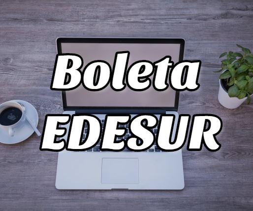 Cómo descargar e Imprimir el recibo de la boleta de EDESUR