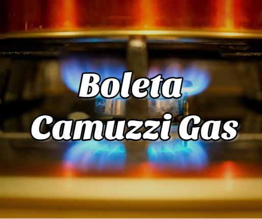 boleta Camuzzi gas