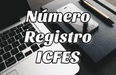 número registro icfes